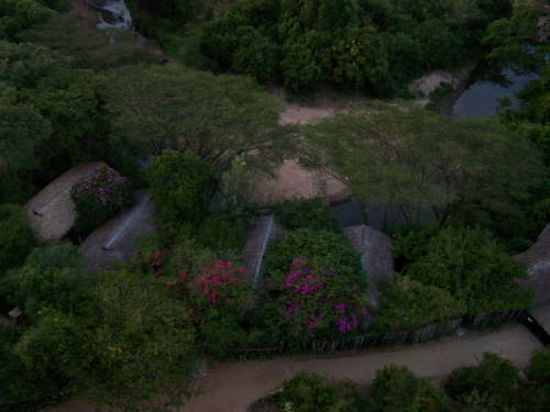 Ariel view of Fig Tree camp